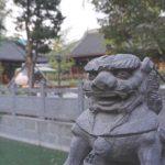 China – Das Jahrhundert im Zeichen des Drachen