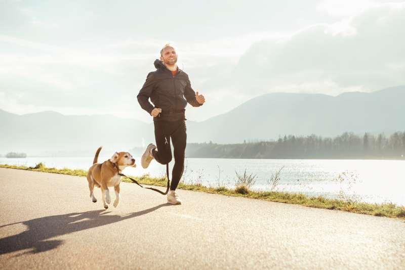 Hundbesitzer sind mehr an der frischen Luft und können vom Hund einiges lernen. Macht das den Fondsmanager besser?